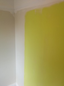 The paint looks like an apple colour before it dries