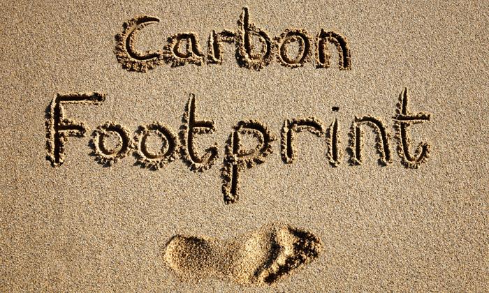 footprint124